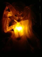 Дафна светится