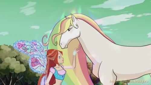 Блум и радужная лошадь