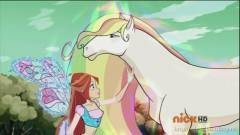 Блум и лошадь