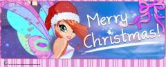 Блум Рождество