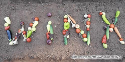 Овощная теоремма.