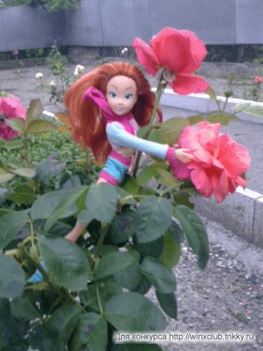 блум в саду
